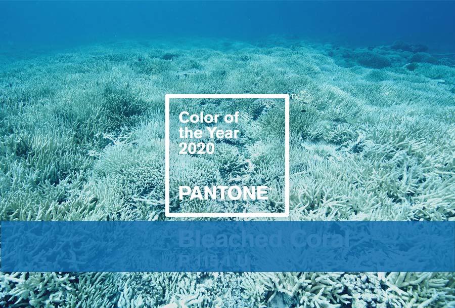 رنگ پنتون سال 2020
